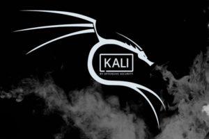 Quels sont les avantages de Kali Linux